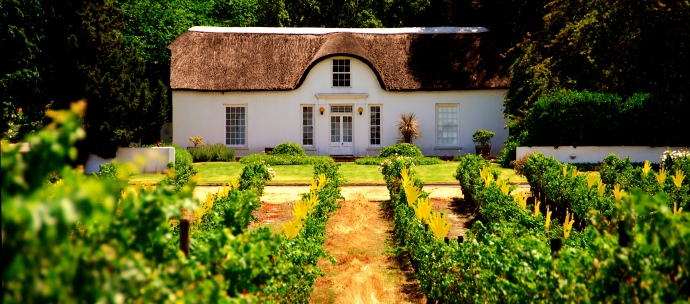 cape winelands, western cape