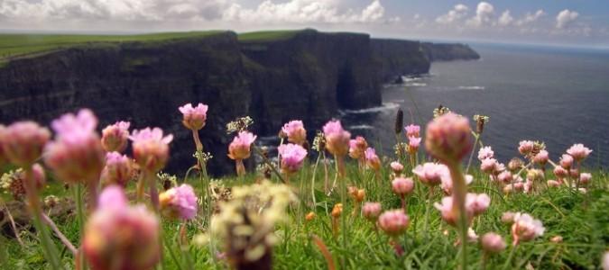 Ireland_Cliffs of Moher
